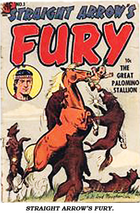 Cover of STRAIGHT ARROW'S FURY.
