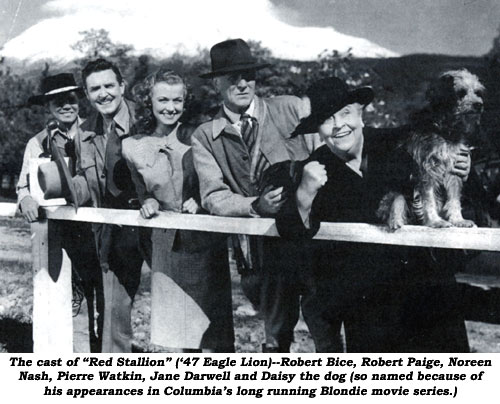 "The cast of ""Red Stallion"" ('47 Eagle Lion)--Robert Bice, Robert Paige, Noreen Nash, Pierre Watkin, Jane Darwell and Daisy the dog (so named because of his appearances in Columbia's long running Blondie movie series.)"