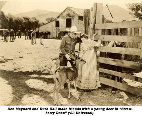 "Ken Maynard and Ruth Hall make friends with a young deer in ""Strawberry Roan"" ('33 Universal)."