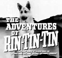 The Adventures of Rin Tin Tin.