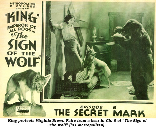 "King protects Virginia Brown Faire from a bear in Ch. 8 of ""The Sign of the Wolf"" ('31 Metropolitan)."