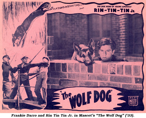 "Frankie Darro and Rin Tin Tin Jr. in Mascot's ""The Wolf Dog"" ('33)."