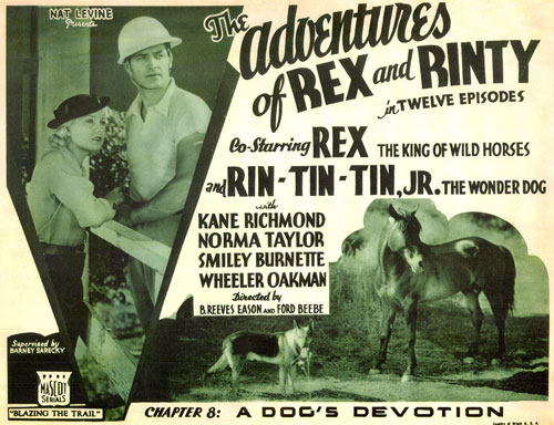 "Title card for The Adventures of Rex and Rinty""."