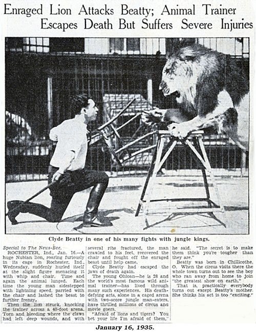 "Article ""Enraged Lion Attacks Beatty; Animal Trainer Escapes Death But Suffers Severe Injuries"" from January 16, 1935 newspaper."