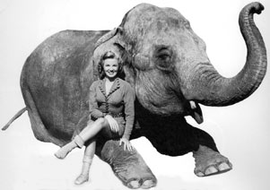 phyllis Coates as Panther Girl of the Kongo with her elephant.