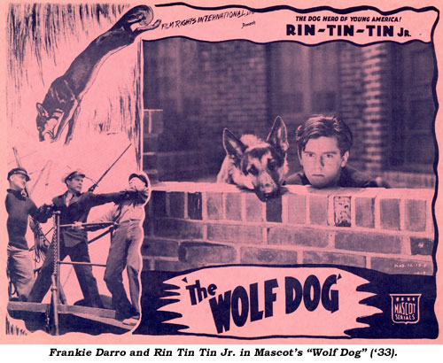 "Frankie Darro and Rin Tin Tin Jr. in Mascot's ""Wolf Dog"" ('33)."