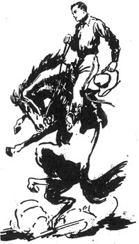 Drawing of cowboy on bucking horse, Rex.
