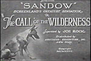 "Screen capture of title frame ""Sandow"" Screenland's greatest sensation in ""The Call of the Wilderness""."