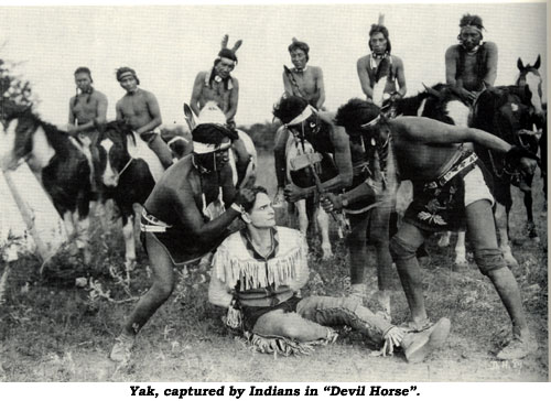 "Yak, captured by Indians, in ""Devil Horse""."