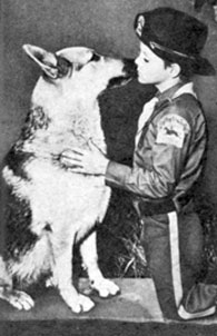 "Great affection between Rinty and Lee Aaker (Corp. Rusty) on ""The Adventures of Rin Tin Tin""."