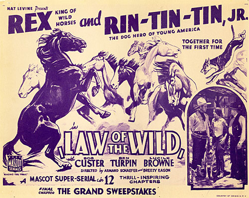 "Title card for ""Law of the Wild"" serial starring Rex and Rin Tin Tin along with Bob Custer."